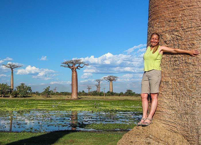 Ivo Jost, Madagaskar Baobabs-Tsingis-Seenomaden