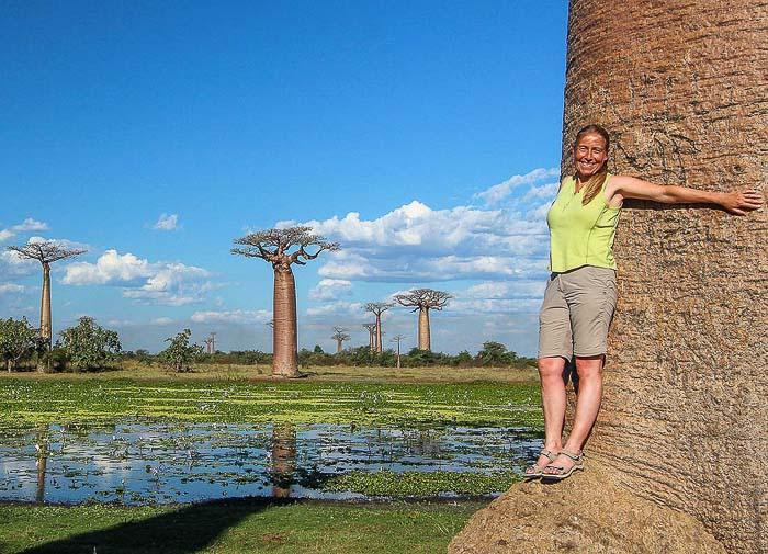 Ivo Jost-Madagaskar Baobabs-Tsingis-Seenomaden